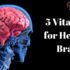 5 Vitamins for Healthy Brain